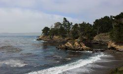 Guide to Exploring California's Coast: Point Lobos
